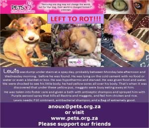 www.pets.org