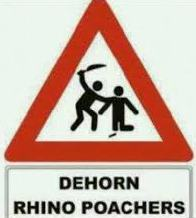 Dehorn Rhino Poachers
