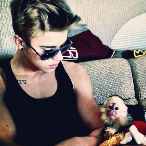 Justin-Biebers-Pet-Monkey-Confiscated