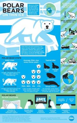Facts_on_polar_bears