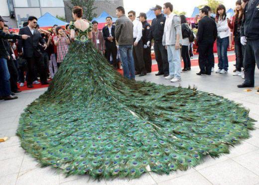Peacock_dress