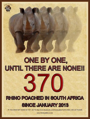 Rhino_poaching_must_end