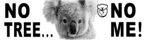 Koala Morne Edit