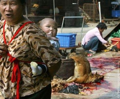 Dog_meat_trade