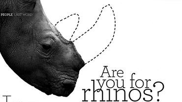 SOTI_ARE YOU FRO RHINOS
