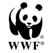 SOTI_WWF_LOGO